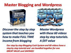 Master the world of blogging and WordPress